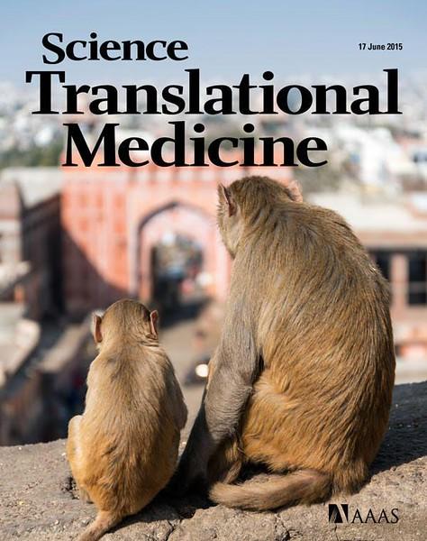 Science Translational Medicine magazine