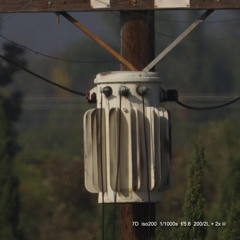 IMAGE: http://julianchen.smugmug.com/Misc/Test-Photos/i-7wV6cKW/0/X3/20121207-Canon%20EOS%207D-7D1_3814_cropped-X3.jpg