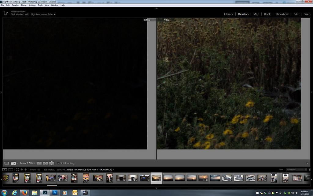 IMAGE: https://photos.smugmug.com/Misc/Test-Photos/i-Dn2TB4p/0/XL/1dx2%20shadow%20pushing_3-XL.jpg