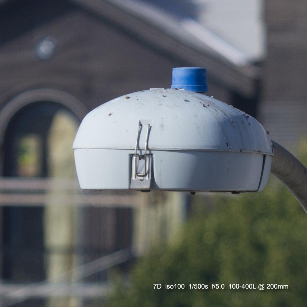 IMAGE: http://julianchen.smugmug.com/Misc/Test-Photos/i-F63HxjT/0/X3/20121207-Canon%20EOS%207D-7D1_3826_cropped-X3.jpg