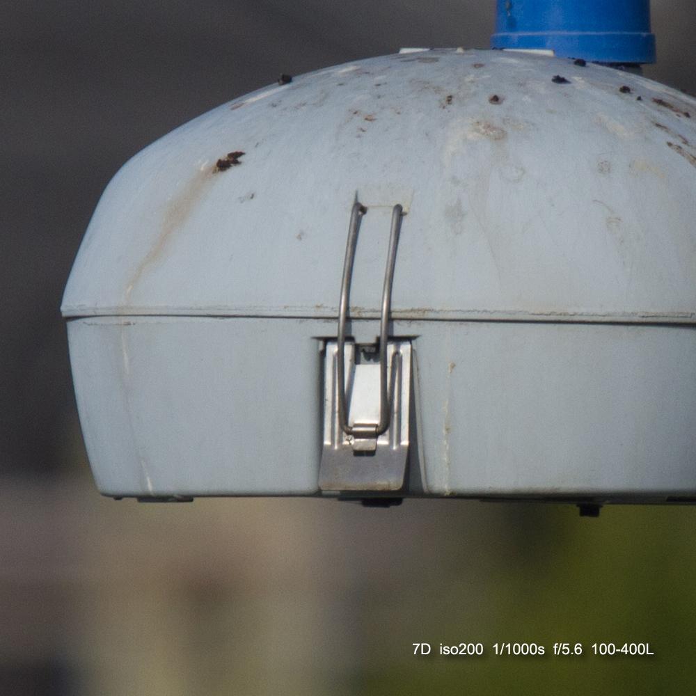 IMAGE: http://julianchen.smugmug.com/Misc/Test-Photos/i-M8jpLTz/0/X3/20121128-Canon%20EOS%207D-7D1_2068_cropped-X3.jpg