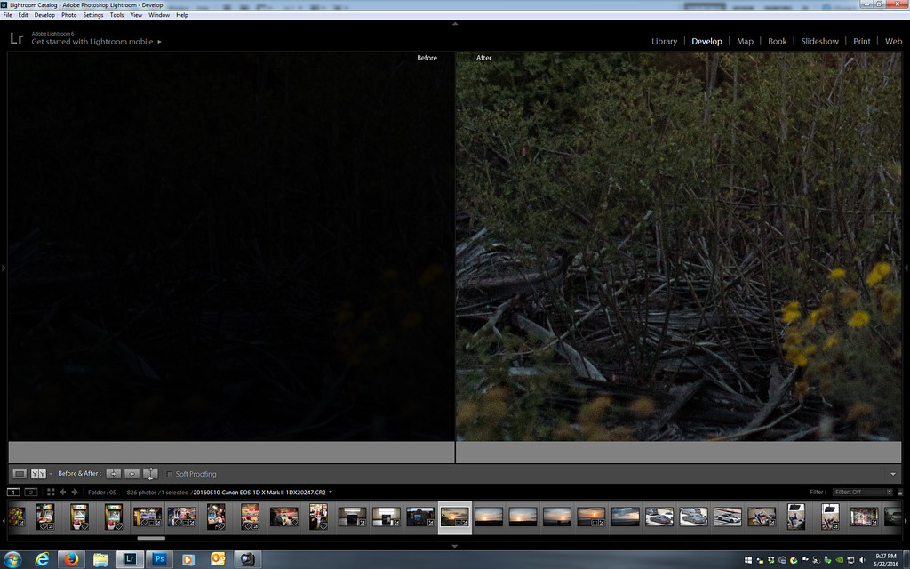 1DX2 vs 1DX comparison (exposure/shadow pushing) -- Camera