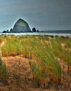 "Grassy By Haystack --- Haystack Rock, Oregon This was so ""Zen"" like as a nice sea breeze blew by as I took this shot..."
