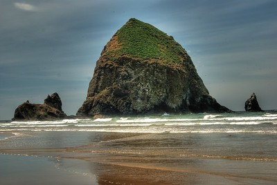 Shore of Haystack -- Haystack Rock, Oregon