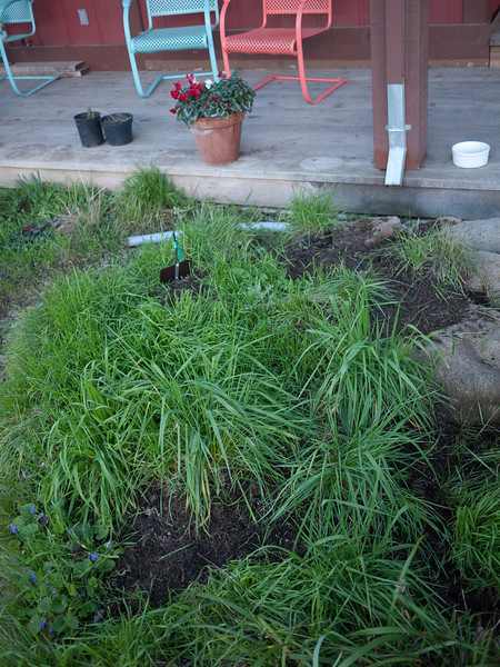 weeding-2