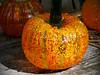 """Wheaton Village NJ """"Festival of Fine Crafts"""", 05 Oct 2014."""