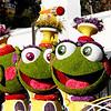 1731228_tn_gnp_me_0102_parade_9