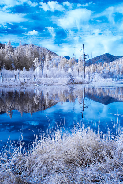 Beaver Pond Infrared II