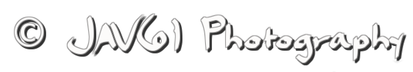 coollogo_com-Dael_Caligraphy2