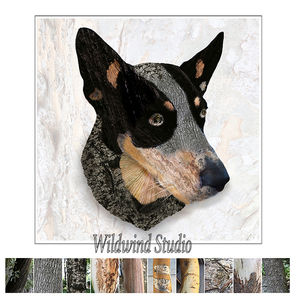 Queensland Heeler 'BARK'