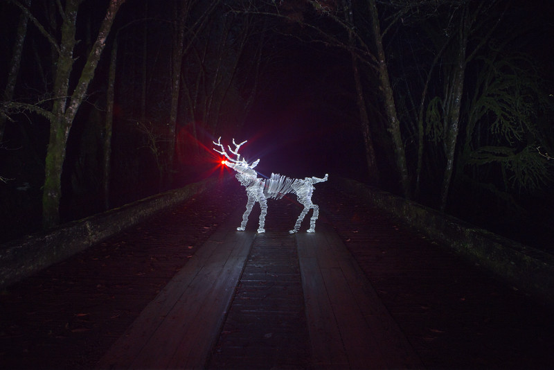 Lost Rudolph