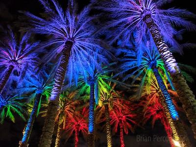 Curtis Hixon Park, Tampa, Florida