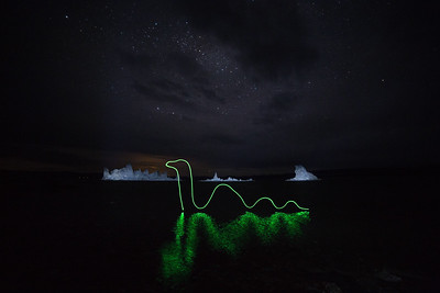 Nessie vacays at Mono Lake