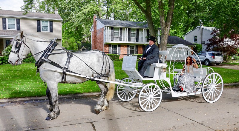 Prom Carriage