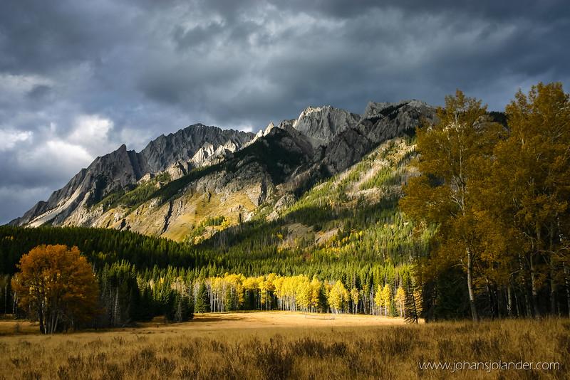 Hillsdale Meadows, Banff National Park