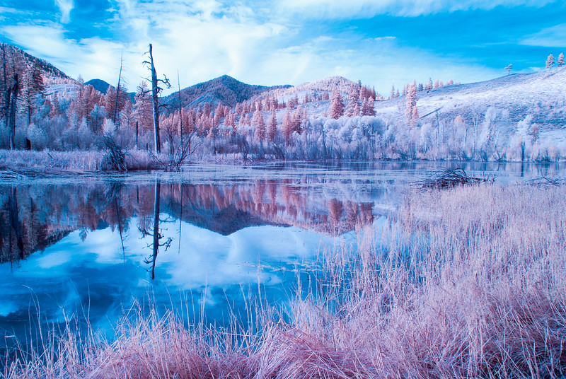 Beaver Pond Infrared III