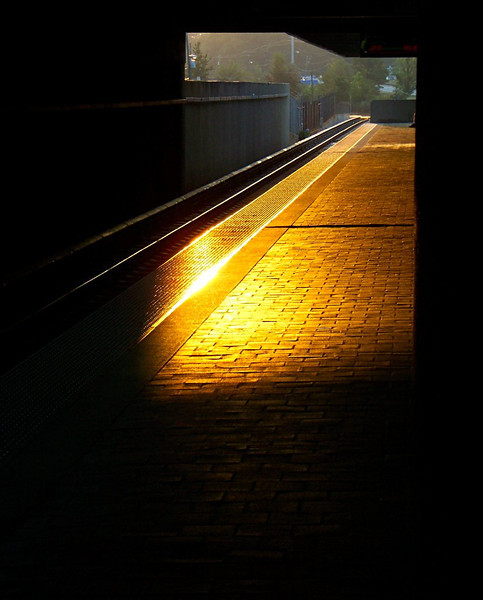 Waiting for the morning train