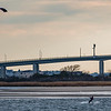 Kiteboarder in Sandy Hook Bay 12/1/16