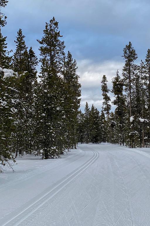 winter%20wonderland-XL.jpg
