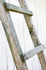 rungs of ladder