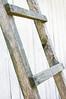 rungs of ladder