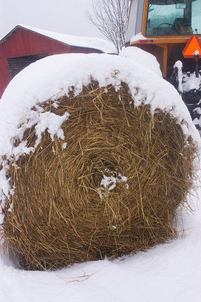 snow-covered hay bale
