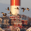 Winthrop, MA - A flock of geese fly across the bay at Point Shirley, with the water tower in the background, 1-22-09.