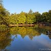 Clark Gardens 08-04-09