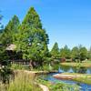 Clark Gardens, Mineral Wells 06-05-09