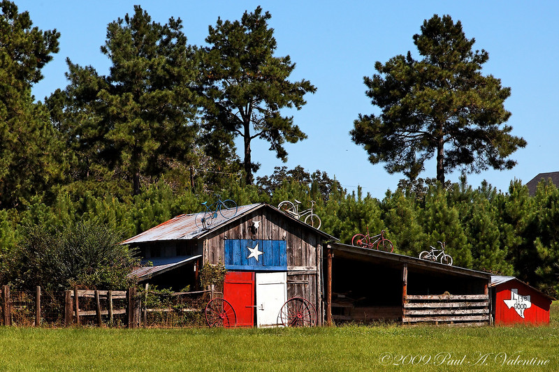 East Texas Landscapes 10-03-09