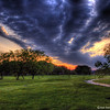 April Sunrise Over the Park