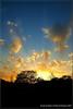 Norich Park Sunset April 12 07s