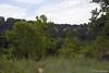 GlenRose Dino Park_06-10-07