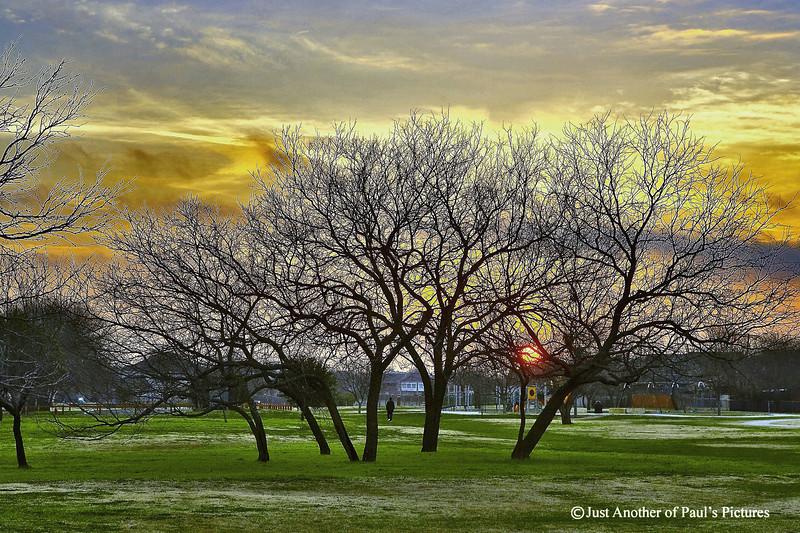 Sunrise over NoRich Park
