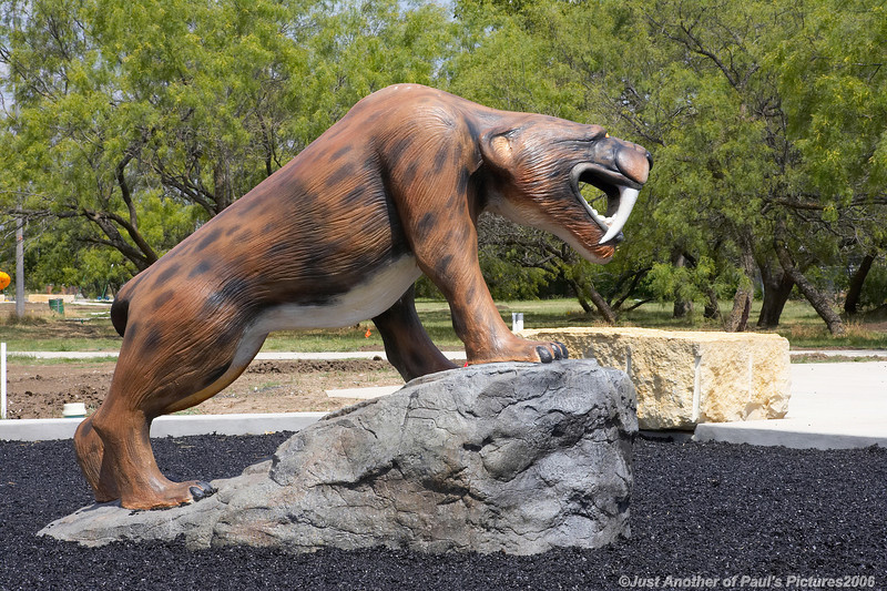 NoRich Park, Sabertooth Tiger
