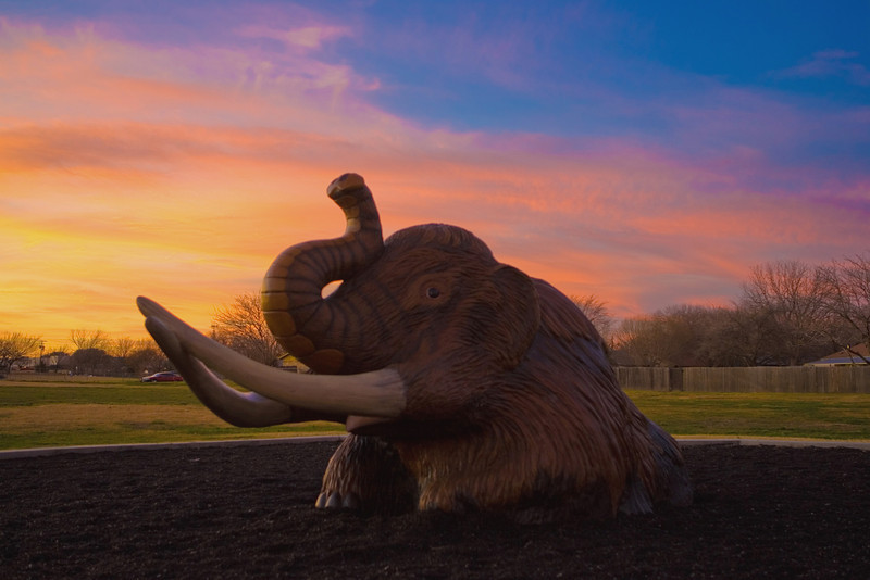 Woolly Mammoth in the sunset.