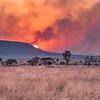 Firey Sunset on the Serengeti