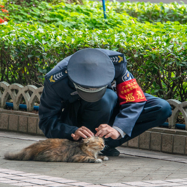 Policeman and the Kitty