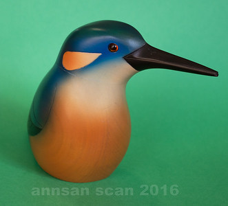 azurekingfisher05