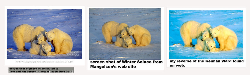 Thomas Mangelsen's WINTER SOLACE and two copies wrongly attributed to others