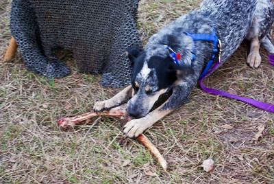 Breauxdy's bone