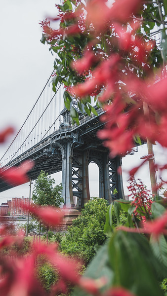 Manhattan Bridge, NY