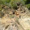 A Rock To Climb