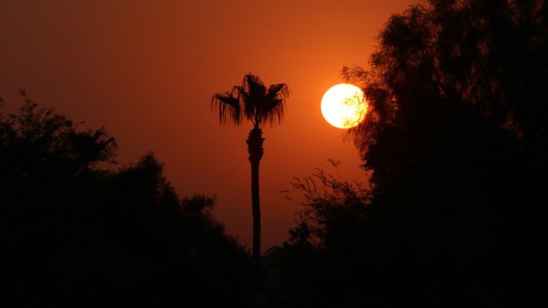 sunrise-in-gilbert-arizona----7742_36989666971_o