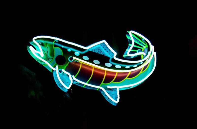 Neon Trout
