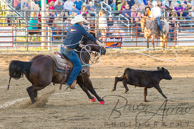 Rodeo 20160716-0056