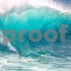 8x10 - Hort-1 - Wave