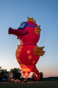 Balloons Aloft 2020-07-0212