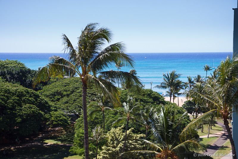 The view of the beach from the Queen Kapiolani Hotel.