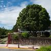Residencia-Marquez_0054